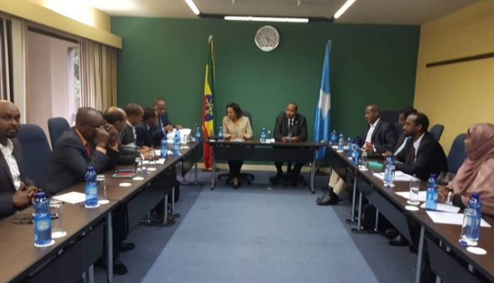 Ethiopian, Somali Joint Committee Hold First Meeting