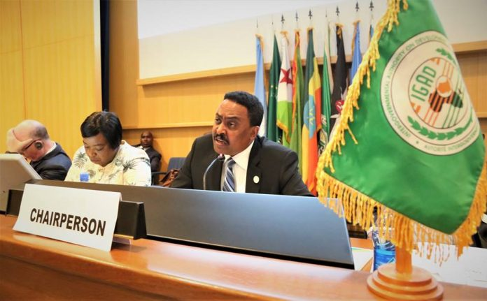,The Minister of Foreign Affairs of the Federal Democratic Republic of Ethiopia, Chairperson of IGAD Council of Ministers, DrWorkneh Gebeyehu, welcomed delegates,