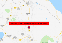 Protesters killed by Security forces in Southern Tigray Region,Northern Ethiopia