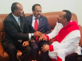 Ethiopian Prime Minister Abiy Ahmed after receiving the Presidents of Eritrea and Somalia have together began their visit of Gondar city.