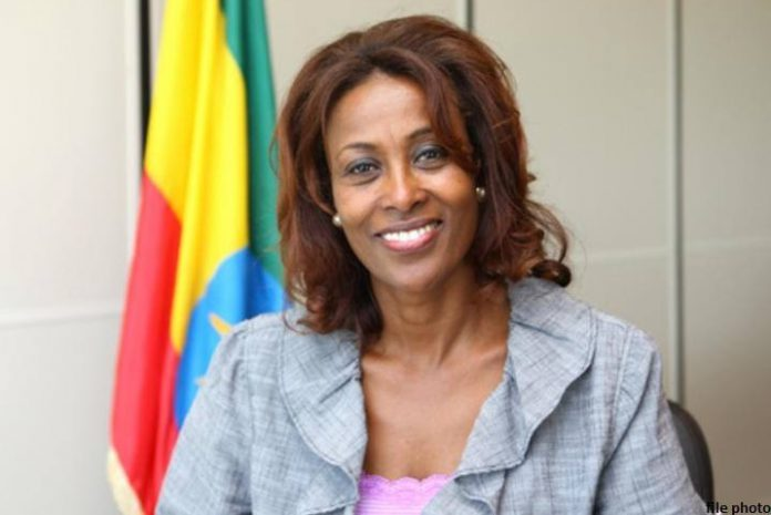 the House approved Prime Minister Abiy Ahmed's nomination of Meaza Ashenafi as new President of the Federal Supreme Court.