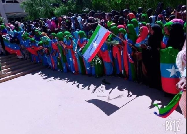 ONLF rebel fighters receive a huge welcome in Somali regional capital, Jigjiga