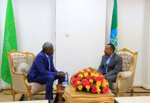 Ethiopian PM, AUC Chairperson Discuss AU Reforms