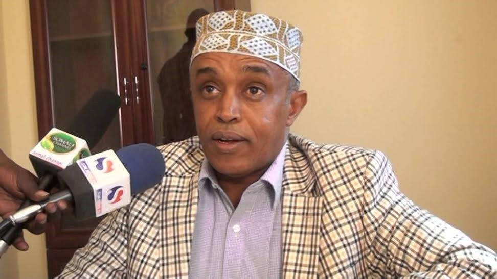 Saeed M. Elmi urged the government to commit itself to constitutional reform
