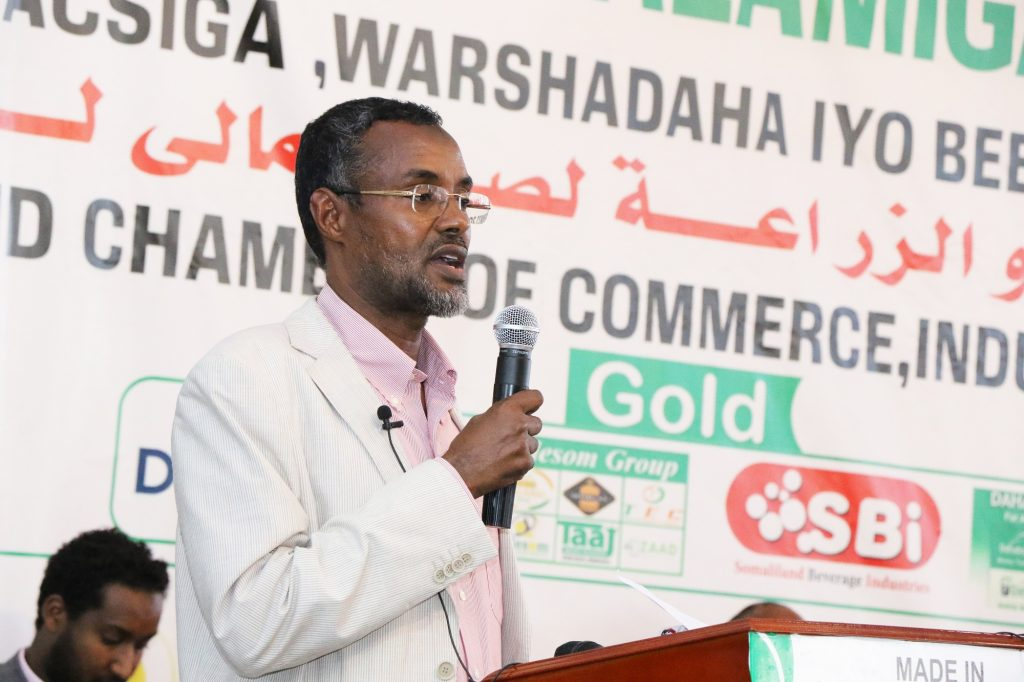Abdirahman Ali Abdi, Deputy CEO of the Group,