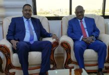 Dr. Workneh Confers with His Sudanese Counterpart