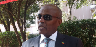 Ethiopia has appointed Ambassador Shamsudin Ahmed Roble as the new Consul General to Somaliland