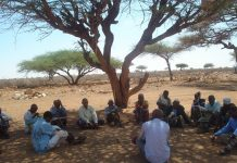 Since the adoption of Somaliland Constitution, the role of traditional elders substantially changed as it marked the introduction of new formal governance systems