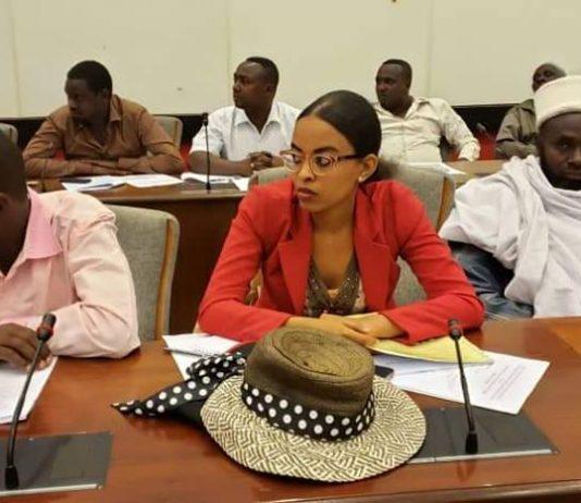Ethio-Kenya Joint Border Commission Meeting Kicks-off in Adama City, Ethiopia