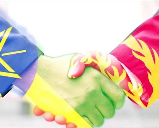 Ethiopia-Eritrea Ties