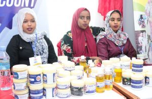 Youth Innovation Products visit sites Somaliland National Youth Day