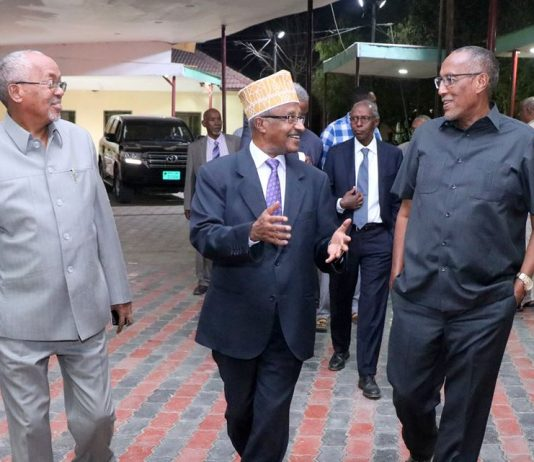 Somaliland President hosts state dinner in honor of Eritrean delegation