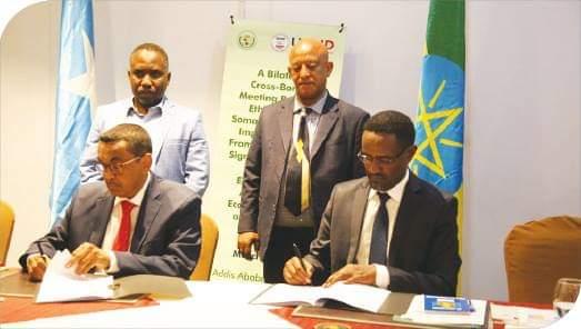 Ethiopia, Somalia signed cross border animal disease control, livestock trade