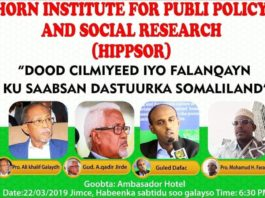 What Kind of Constitution Does Somaliland Need For Peace and Development