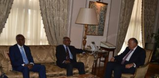 Eritrea and Egypt Foreign Ministers Discuss Nile Basin, Regional Issues