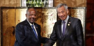 Djibouti President Ismail Omar Guelleh and Singapore Prime Minister Lee Hsien Loong discussed potential cooperation in the areas of urban development, port and maritime development, logistics and digital economy.ST PHOTO: KEVIN LIM