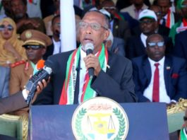 Somaliland President Musa Bihi Abdi has announced his administration released the prisoners of War who were captured during Turkaraq