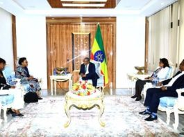 Ethiopia FM Gedu Holds Discussions with Kenyan Ambassador to Ethiopia