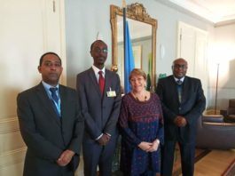 A High-Level Ethiopian delegation Meets UN Rights Chief========================