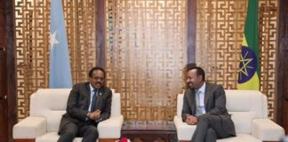 Ethiopia, Somalia Leaders Hold Bilateral Discussion in AddisAbaba