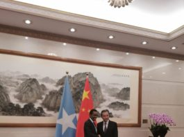 Somalia FM holds bilateral talks with his Chinese counterpart in Beijing