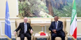 Somaliland: President Meets with UN SRSG James Swan