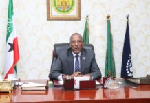 Somaliland president pardons 19 pirates transferred from Seychelles