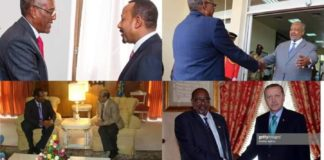 Somaliland is deeply alarmed by Somalia's aggression towards a growing list of African nations-Press Statement