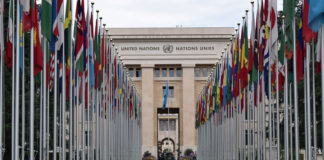An open letter to the Security Council, the African Union, the European Union and IGAD