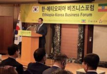 Ethiopian PM Invites South Korean Investors To Invest In Ethiopia