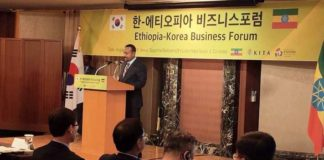 Ethiopian PM Invites South Korean Investors To Invest In Ethiopia