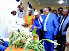 Somaliland Marks World Food Day