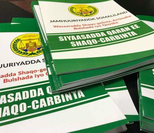 Somaliland Cabinet approves National Internship Policy
