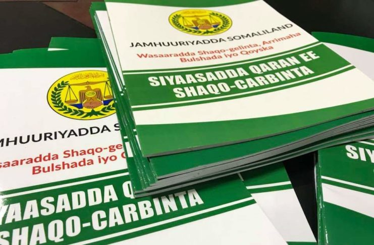 Somaliland Cabinet approves National Internship Policy