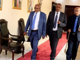 Somaliland Global Diaspora forum calls President and Political parties to respect the will of the people