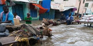 FAO deploys its post-emergency recovery expertise to respond to the devastating floods in Somalia