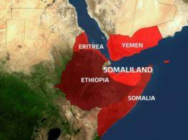 Who want to bury Somaliland's unity alive?