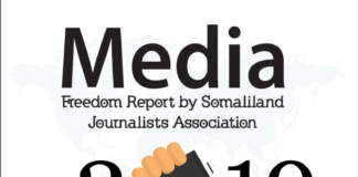 SOLJA Media Freedom Review in 2019-final.pdf 1 / 8