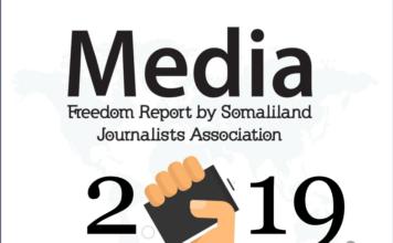 SOLJA Media Freedom Review in 2019-final.pdf 1 / 8