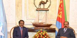 Eritrea, Somalia leaders discuss regional issues