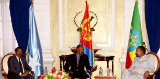 Heads of State and Government Meeting Between Eritrea, Ethiopia and Somalia Joint Communiqué