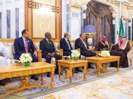 Saudi King Salman recieves foreign ministers of Arab and African countries bordering the Red Sea and the Gulf of Aden. (SPA)