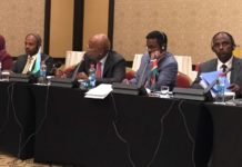 Horn of Africa Initiative Ministerial Meeting Underway in Djibouti