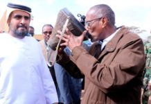 Somaliland and UAE engage in a joint effort to help camel farmers