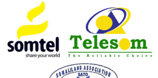 Somaliland Association of Telecom Operators Welcome Decision to Curtail Somcable 30 years Monopoly
