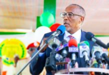 Somaliland president Muse Bihi Abdi calls for people to unite against COVID-19 threat