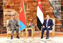 Eritrean,Egyptian presidents discuss cooperation, regional issues
