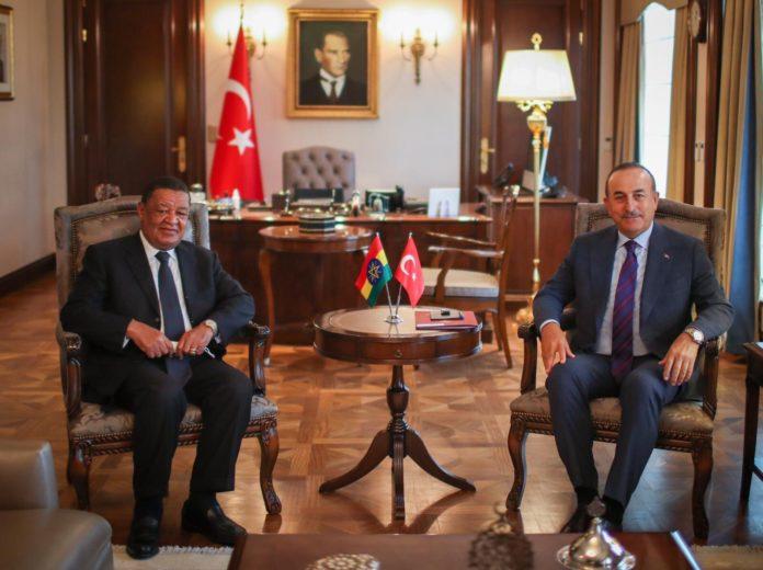 Turkish FM Meets Ethiopia PM Abiy Ahmed's Special Representative