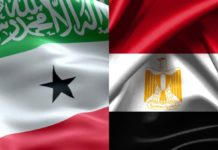 Somaliland and Egypt pledge steps to boost economic ties