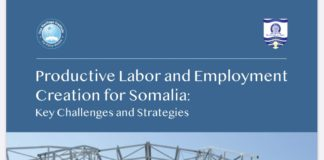 Productive labor and Employment Creation for Somalia